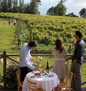 luxury winery tour tasmania